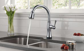 Cassidy Kitchen Faucet by Delta